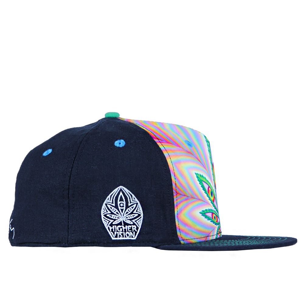 Alex Grey Higher Vision Shallow Fitted - Grassroots California - 4