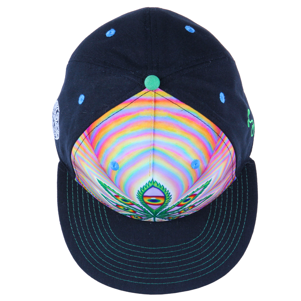 Alex Grey Higher Vision Shallow Fitted - Grassroots California - 5
