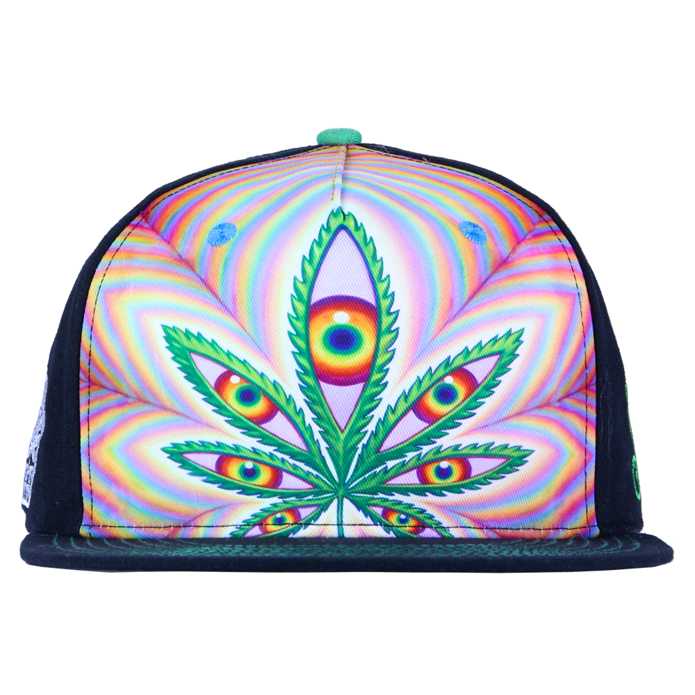 Alex Grey Higher Vision Shallow Fitted - Grassroots California - 6