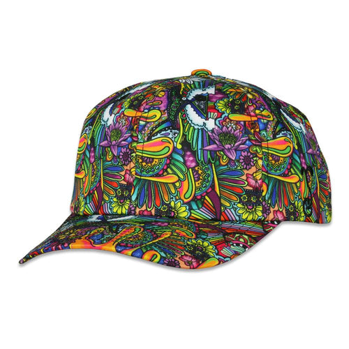 Ellie Paisley Oil Spill Dad Hat