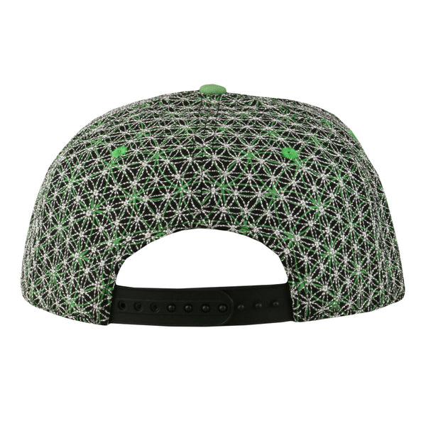 Laser Guided Visions Silver Green Snapback Hat