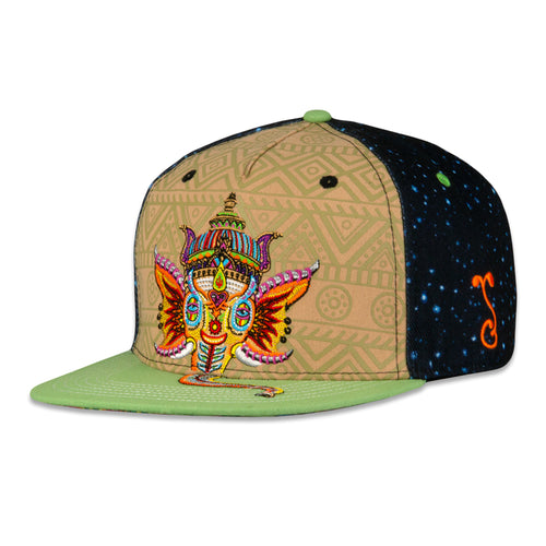 Chris Dyer Jai Ganesha Fitted Hat