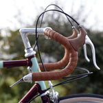 Dia-Compe Bar End Shift Levers - Retro Road