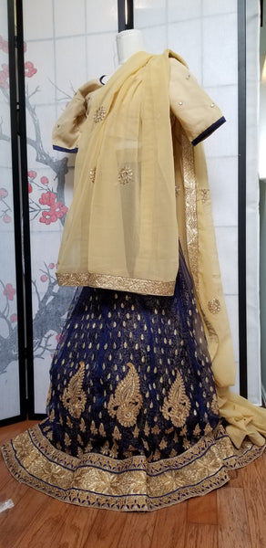 Lehanga - Deep Blue with Cream embroidery