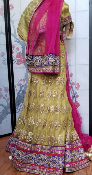 Lehanga - Cream with Pink and Dark Blue embroidery