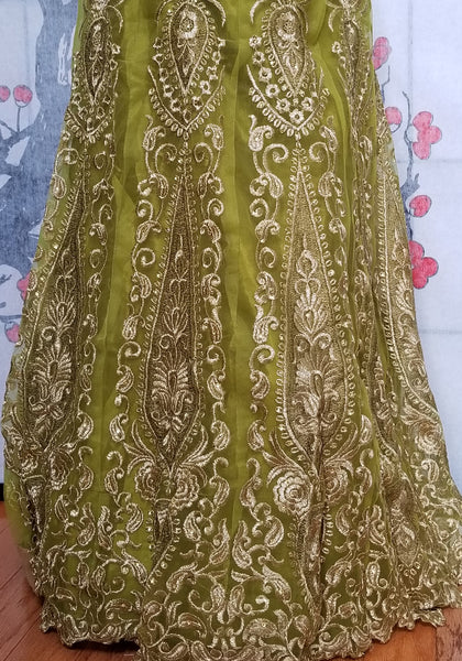 Lehanga - Light Green with Cream embroidery