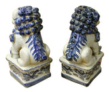 blue white Foo Dogs - Chinese lions - Fengshui