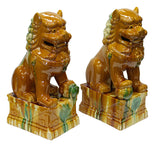Yellow Foo Dogs - Chinese lions - Fengshui