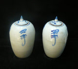 pair ceramic temple jar
