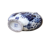 Chinese Blue White Porcelain Scenery Round Flat Flask Vase cs3604S