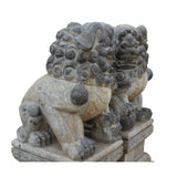 pair Chinese traditional stone Foo Dog