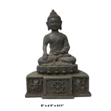 Vintage Chinese Rustic Iron Color Finish Sitting Buddha Statue cs5622S