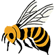 Western Bumble Bee Icon
