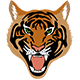 Sumatran Tiger Icon