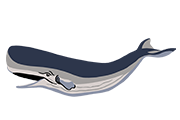 Sperm Whale Icon