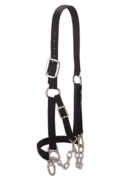 Heavy Duty Restraint Halter