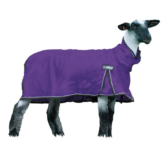 Procool Sheep Blanket