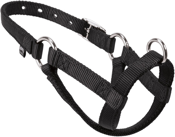 Sheep Goat Walking Halter