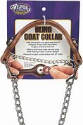 Bling Goat Collar & Snaps