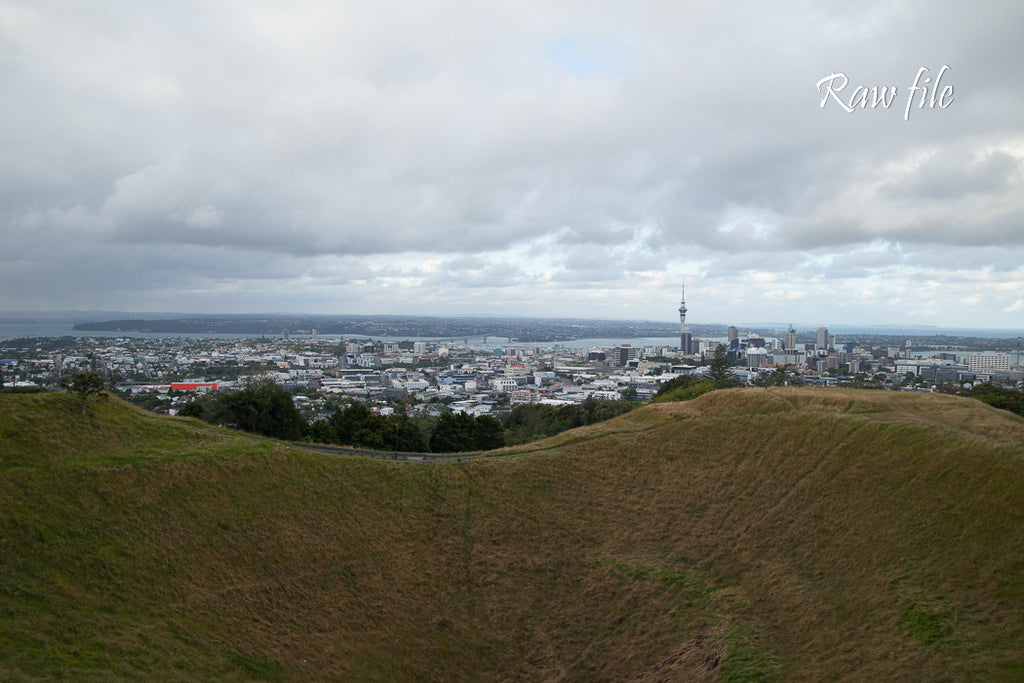 Before lightroom preset applied - city buildings in the distance with a volcanic crater in the foreground (Auckland City from Mt Eden)