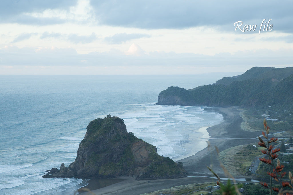 Before lightroom preset applied - beach, waves and coastline from a high viewpoint (Piha Beach with Lion Rock)