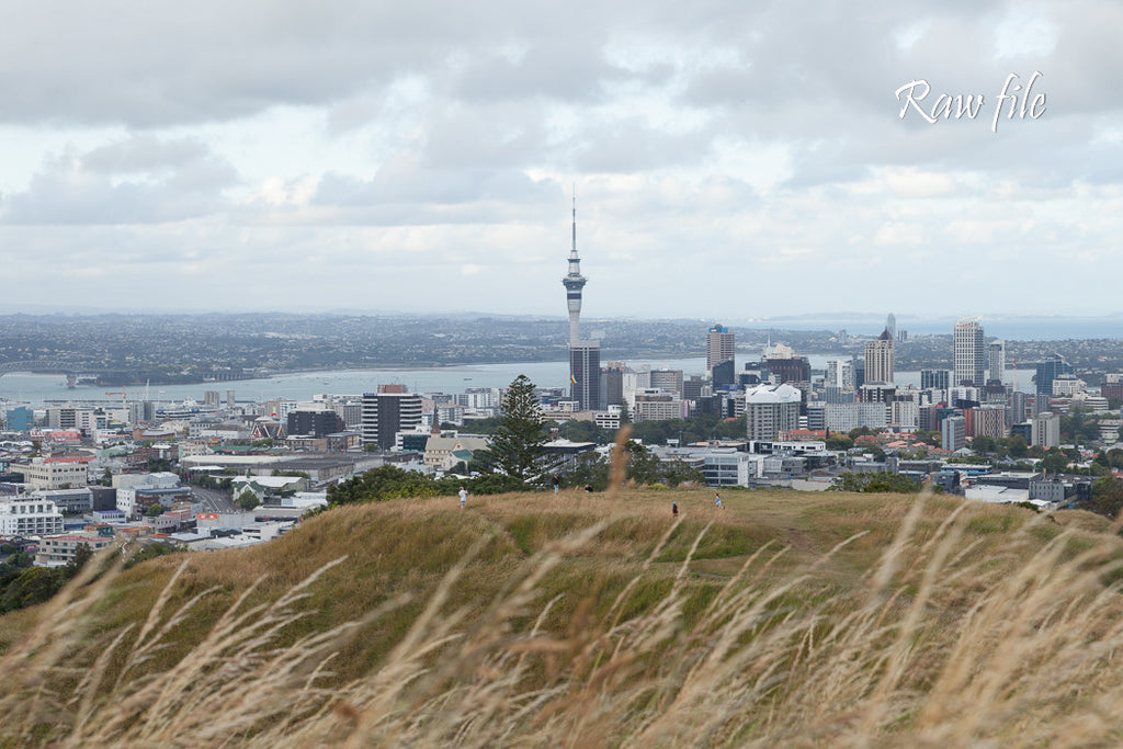 Before lightroom preset applied - city building in the distance with grass and volcanic crater in foreground (Auckland City view from Mt Eden)