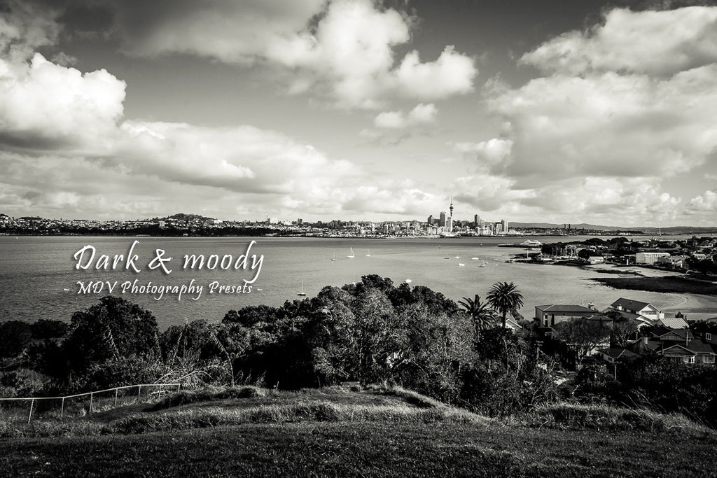 After lightroom preset 'Dark and moody' applied - city skyline in the distance, harbour and water midground, bushes & vegetation foreground (black and white)