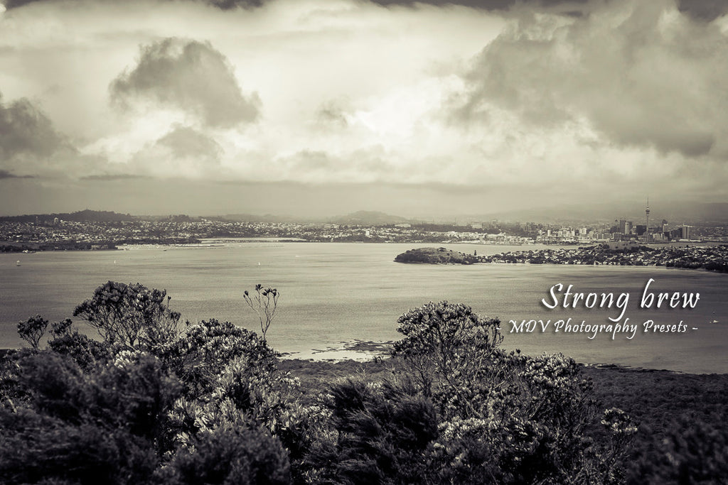 After lightroom preset 'Strong brew' applied - city buildings in the distance, vegetation in the foreground, storm clouds (black and white)