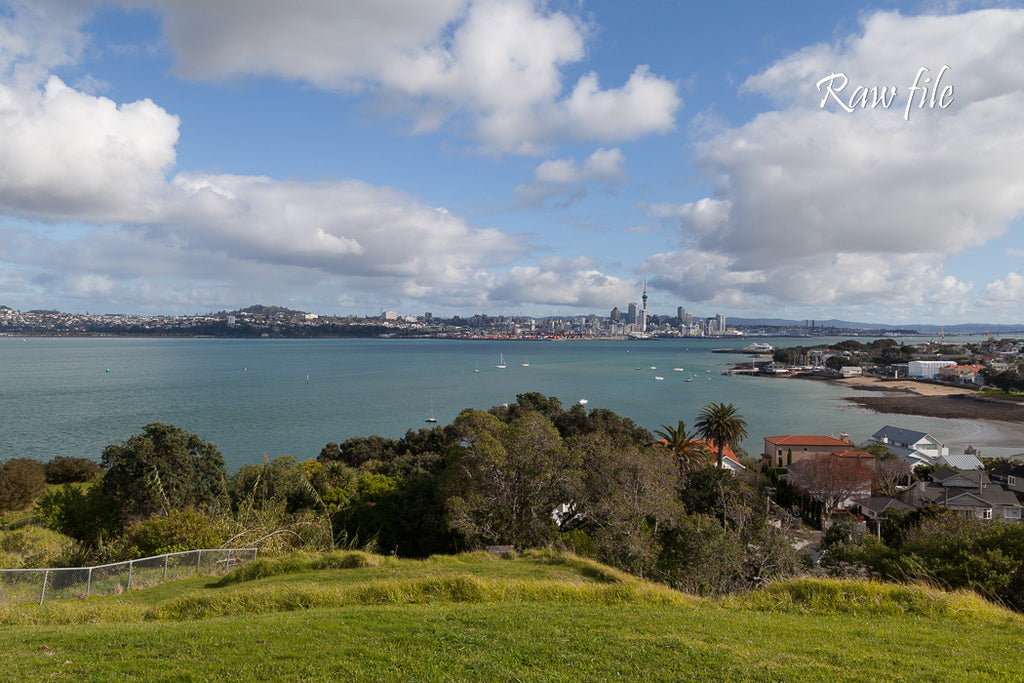 Before lightroom preset applied - city skyline in the distance, harbour and water midground, bushes & vegetation foreground