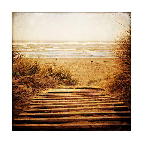 Winter Beach, NZ | Dream Art Print