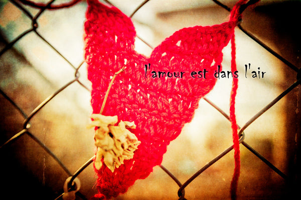 A red knitted love heart with a dried flower on it tied to a wire fence.  Textured print with quote entitled l'amour est dans l'air.