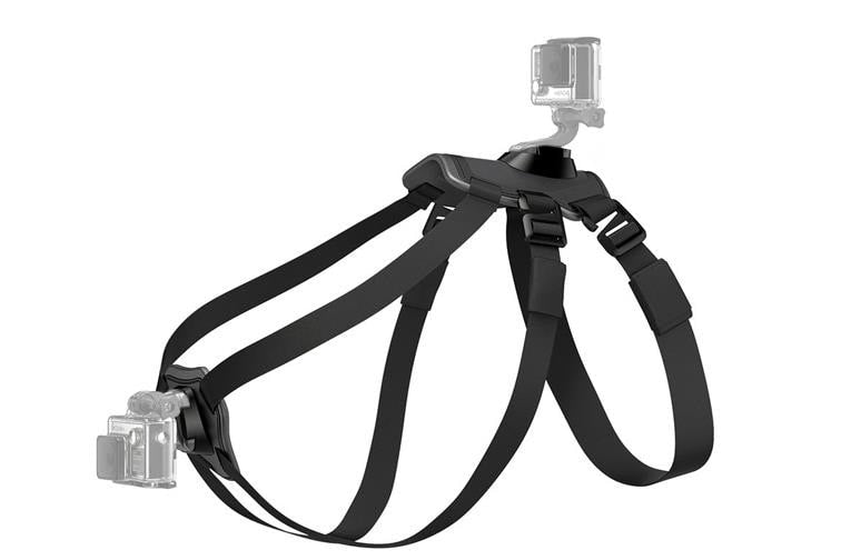 Dog Harness Chest Back Mount Strap Accessories For GoPro 1 2 3 4 Session Camera