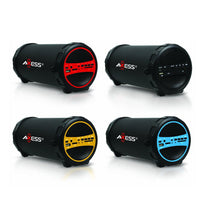 Bluetooth Indoor/Outdoor Party Speaker