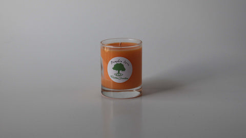 3oz Pumpkin Spice soy wax votive