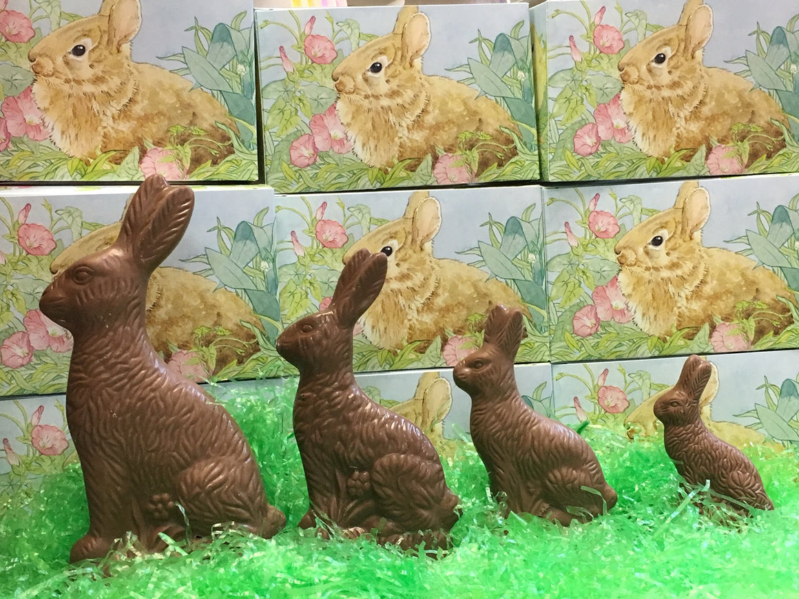 Solid Milk Chocolate Sitting Easter Bunny
