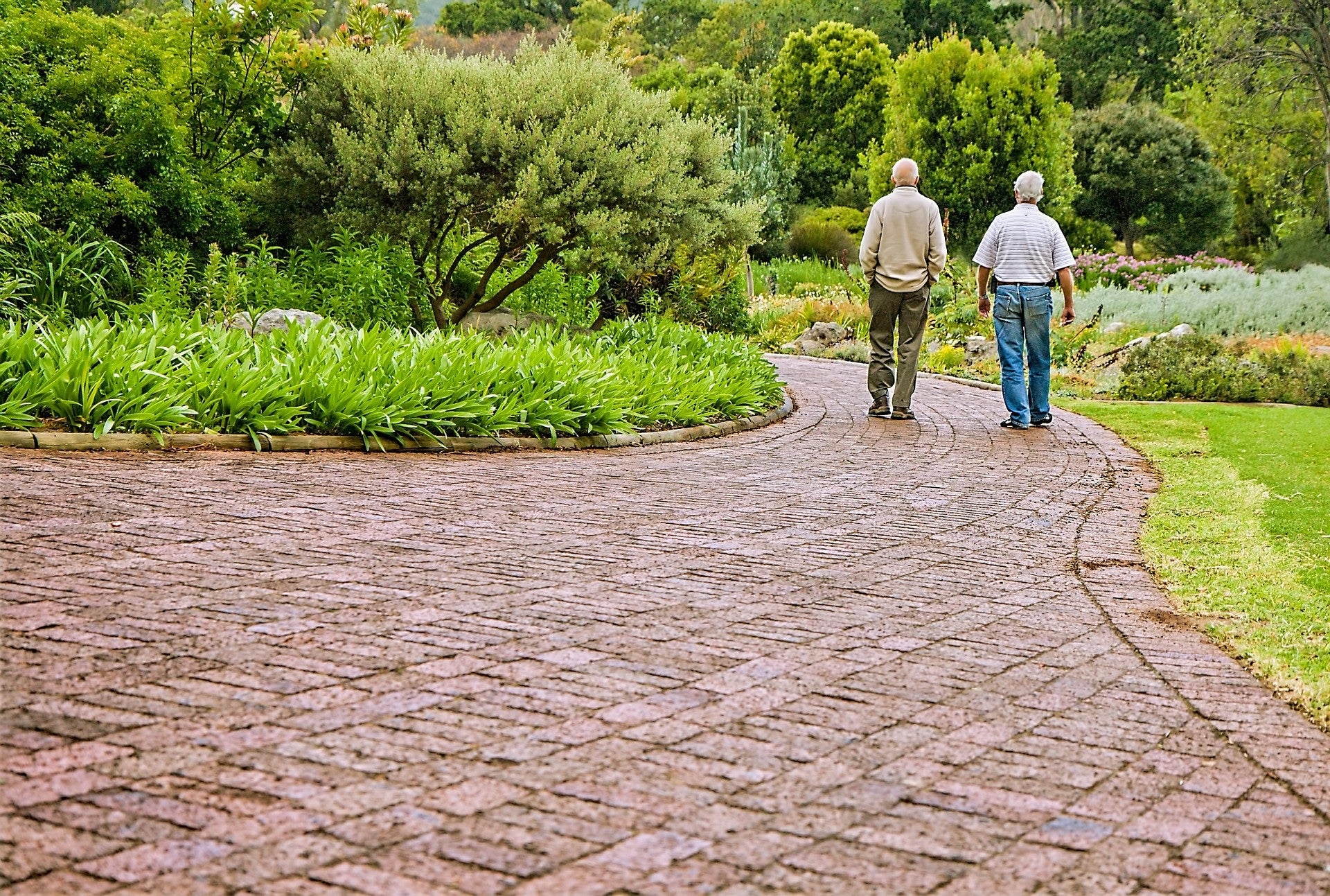 Do Seniors Listen to or Act Upon Advice about Fall Prevention