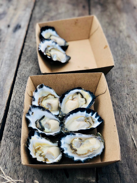a. Quality Medium Sydney Rocks PLUS a free shucking knife!