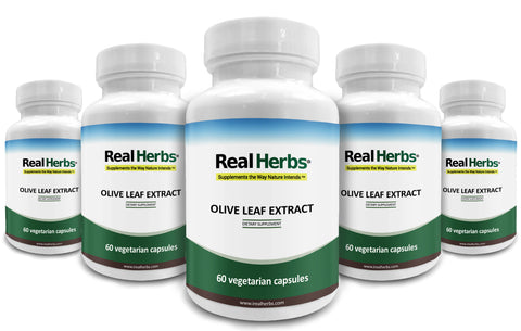5 Bottle of Olive Leaf Extract 750mg - 300 Vegetarian Capsules