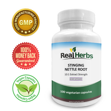 Load image into Gallery viewer, Stinging Nettle Root 10:1 Pure Extract 750mg - 100 Vegetarian Capsules