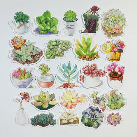 Succulent stickers 33 pcs planner stickers Filofax Stickers plant stickers watercolor stickers(D style)--S051