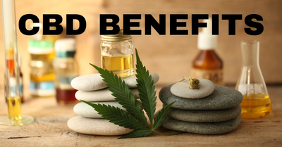7 Benefits of LBC CBD Oil - Sleeping Beauty