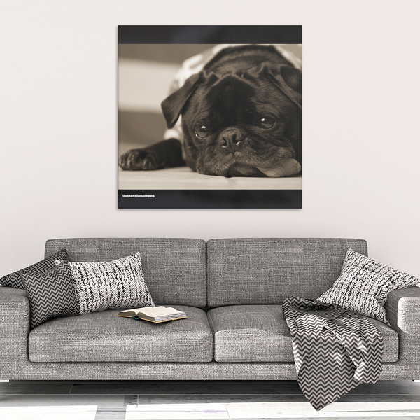 Our Pug Canvas Wrap