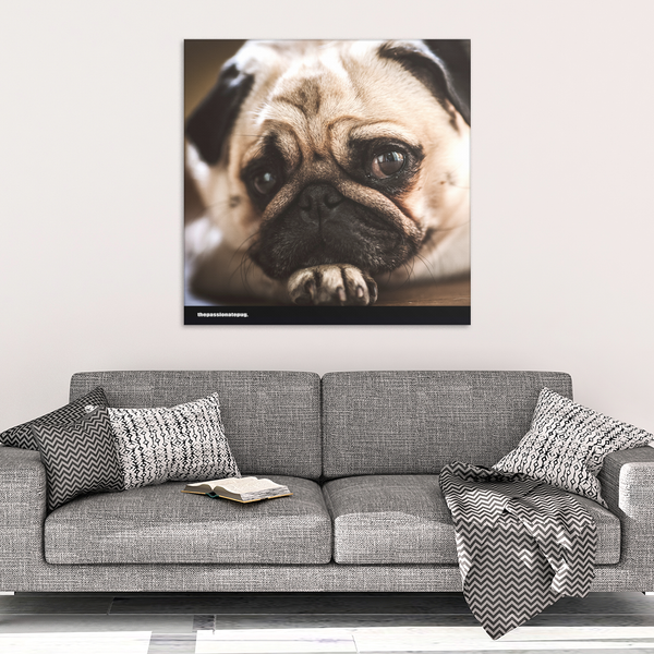 My Pug Canvas Wrap