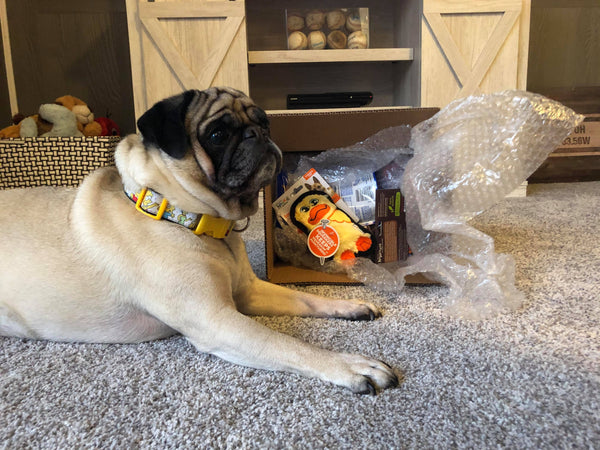 The Passionate Pug Subscription Box