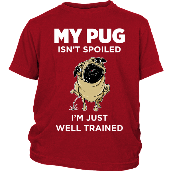 My Pug Isn't Spoiled Kids T-shirt - the passionate pug - District Youth Shirt / Red / XS - 2