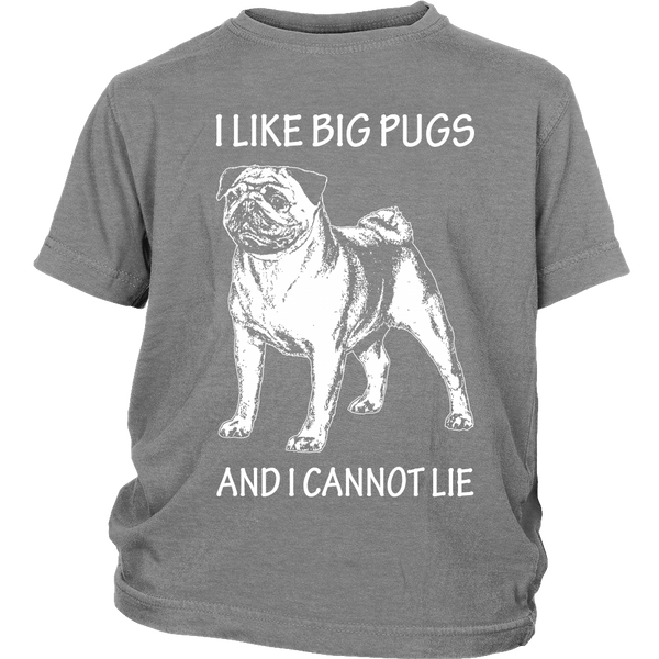 I Like Big Pugs Kids T-shirt - the passionate pug - District Youth Shirt / Sport Grey / XS - 4