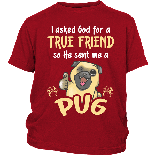 God Sent Me A True Friend Kids T-shirt - the passionate pug - District Youth Shirt / Red / XS - 2