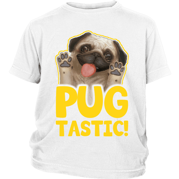 Pugtastic Kids T-shirt - the passionate pug - District Youth Shirt / White / XS - 1