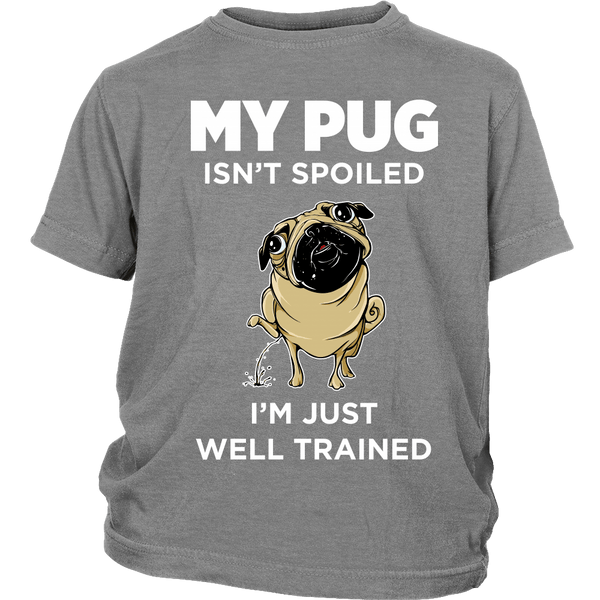 My Pug Isn't Spoiled Kids T-shirt - the passionate pug - District Youth Shirt / Sport Grey / XS - 4