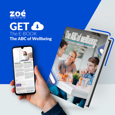 https://usa.zoewater.lat/wp-content/uploads/2021/07/The-ABC-of-Wellbeing.pdf